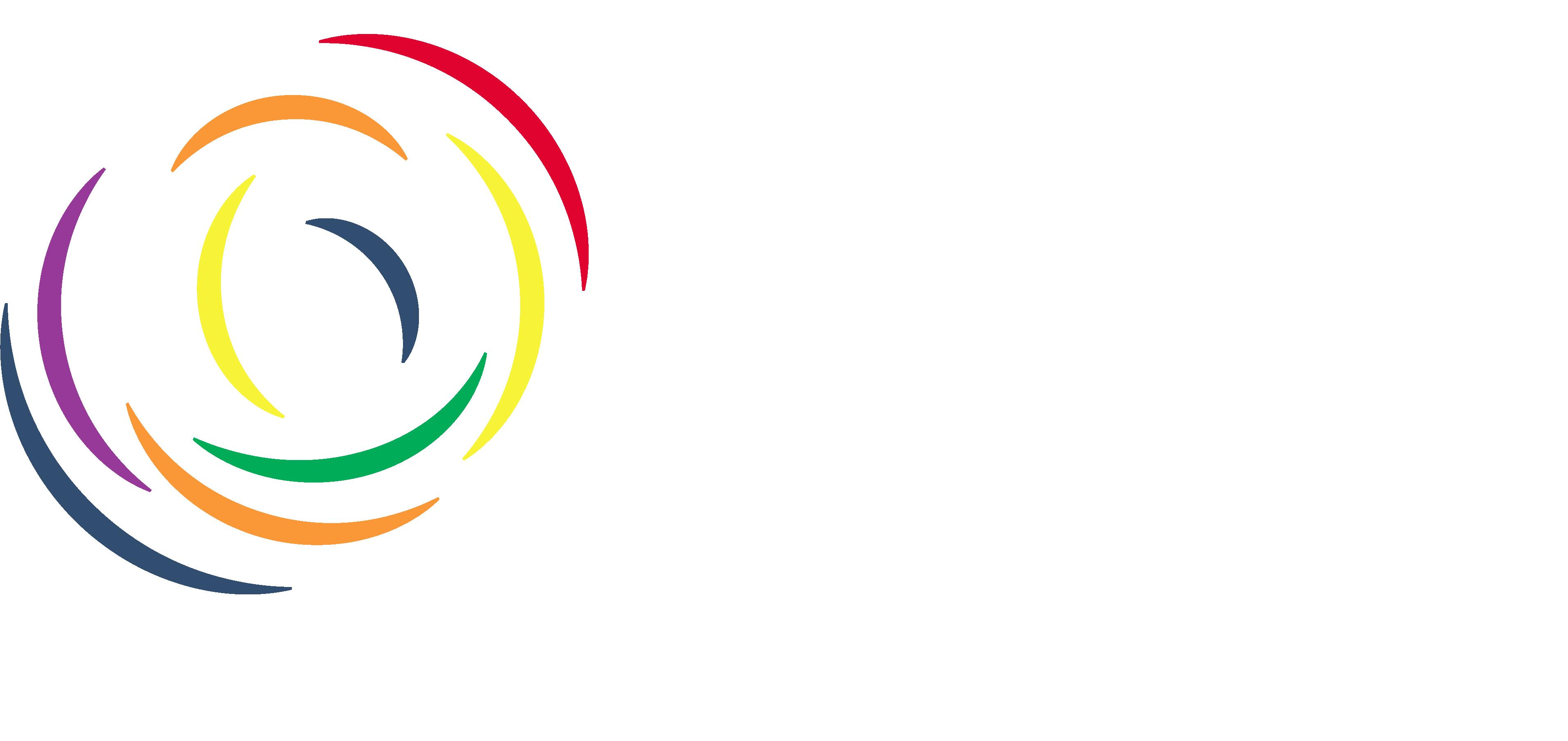 AMP CONSEILS QSE